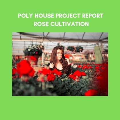 Rose cultivation Poly House Project Report