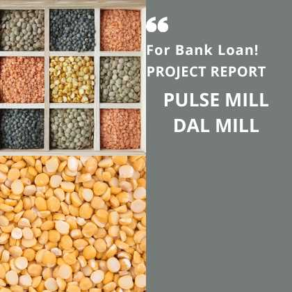Dal Pulse Mill Project Report