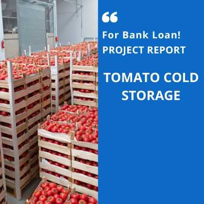 Tomato Cold Storage Project Report