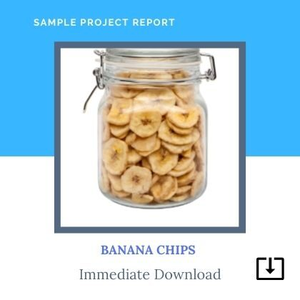 Banana Chips sample Project Report Format